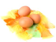 eggs and feather isolated on white background. easter decor. - stock photo