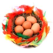 easter egg in nest isolated on white background - stock photo