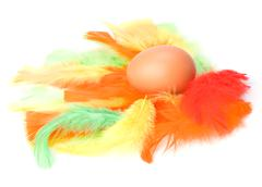 egg and feather isolated on white background. easter decor. - stock photo