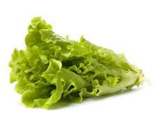 Stock Photo of lettuce salad isolated on white background