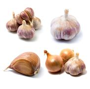 Garlic and onion isolated on white Stock Photos