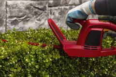 Power hedger trimming hedges Stock Photos
