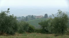 vineyards in the Tuscany, Italy - stock footage