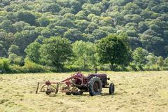 antique tractor and threshing machine - stock photo