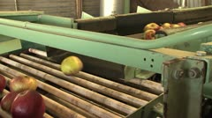 Apple factory Stock Footage