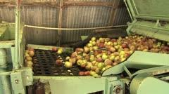Omenat liukuhihnalla tehtaassa Arkistovideo