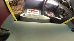 Skee Ball V1 - HD Stock Footage