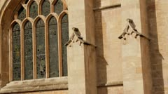 Bath Abbey detail Stock Footage