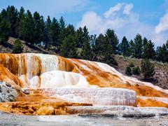 Yellowstone's Mammoth Hot Springs Stock Photos