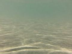 Underwater Ocean HS73 Slow Motion 240fps Stock Footage