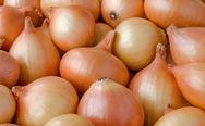 Heap of onions Stock Photos