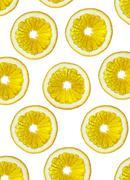 Slices of an orange on a white background. Stock Illustration