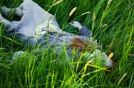 Dead woman laying in grass Stock Photos