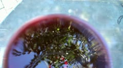 Reflection on the surface of red wine in a glass. Stock Footage