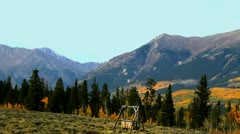 Fall foliage in the high-country - stock footage