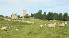 Chipping-campden-sheep - stock footage