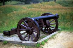 Cannon, american siege line Stock Photos