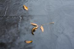 rain water texture - stock photo