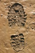Walker's boot print in wet mud Stock Photos