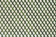 Green wooden lattice wall Stock Photos