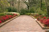 Stock Photo of Wide garden walkway