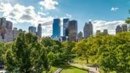 Central Park in Manhattan New York City - Beautiful Nature Trees in 4K Stock Footage