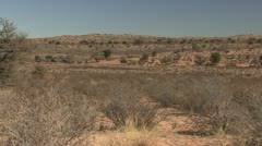 P02237 Kalahari Desert in Africa Stock Footage