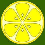 lemon segment - stock illustration