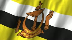 Brunei Waving Flag - stock footage