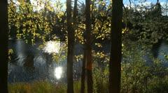 Autumn lake trees sun reflection Stock Footage
