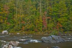 Chattooga river fall scenic - stock photo