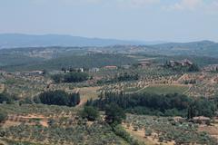 Chianti vineyard and Tuscan countryside. Stock Photos
