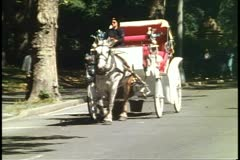 Horse carriage passing in Central Park, New York City, 1993 Stock Footage
