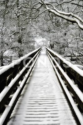 Stock photo of snowcovered walkway nidd gorge