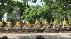 Row of meditating buddhas in leafy surrouding Stock Footage