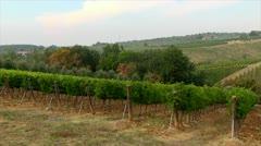 Italy, Tuskany - stock footage