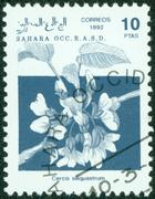 Stamp printed in Sahrawi Arab Democratic Republic, shows flower , circa 1992 Stock Photos