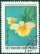 stamp printed in Vietnam shows orchid Dendrobium aggregatum, circa 1976 - stock photo