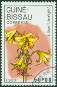 Stamp printed in GUINEA shows lilium limelight, circa 1989 Stock Photos