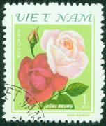 stamp printed in Vietnam shows Flower, circa 1974 - stock photo