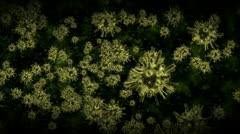 Alien virus cells. - stock footage