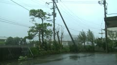 Power Lines Trees Thrash In Hurricane Winds - stock footage