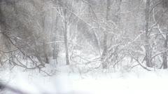 Heavy winter snow. Slow motion Stock Footage