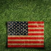 Stock Illustration of paper flag of usa on grass