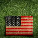 Paper flag of usa on grass Stock Illustration
