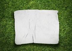 old fabric on grass - stock illustration