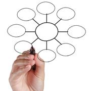 hand drawing an organization chart - stock illustration