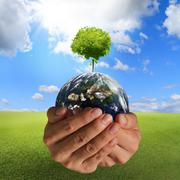 tree on the earth - stock illustration