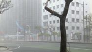 Stock Video Footage of Hurricane Winds Tear Through City Streets