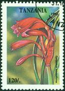 stamp printed in Tanzania shows tropical flowers - stock photo